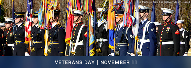 Veterans Day 2020 | Military.com