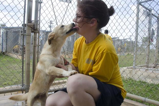 Damage Controlman Fireman Anna Cornish, assigned to the submarine tender USS Frank Cable, plays with a dog at Guam Animals in Need shelter during a community relations event in Yigo on Feb. 9, 2018. (U.S. Navy photo by Mass Communication Specialist 3rd Class Heather C. Wamsley)
