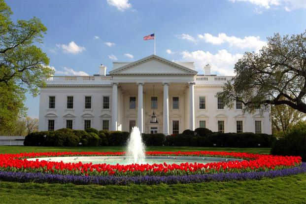 Colorful flowers around the fountain in front of the White House (Photo: Teddy Yoshida/National Science Foundation)
