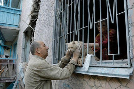 Valery who gave only his first name takes his suffered cat from his damaged house after shelling in the city of Slovyansk, Donetsk Region, eastern Ukraine Monday, June 30, 2014. (AP photo)