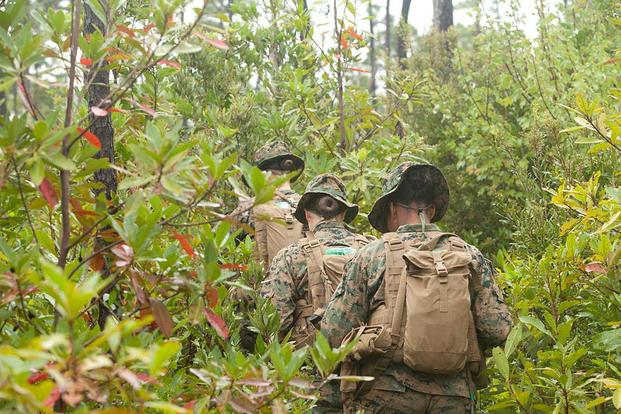 FILE PHOTO -- U.S. Marines navigate their way through forest grounds using the land navigation instruction given by their combat instructors, Camp Geiger, N.C., Oct. 10, 2013. (U. S. Marine Corps/Cpl. Maricela Veliz)