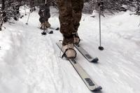 Soldiers wear the Extreme Cold Weather Boot, or ECWB, during cross-country ski training in Alaska. Photo: U.S. Army.